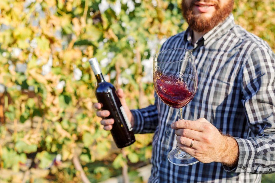 vendita-vino-rosso-taurasi